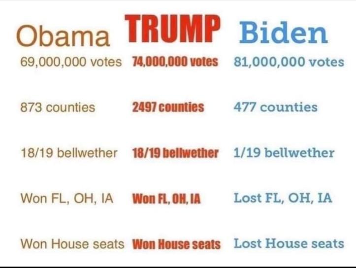stolen-election