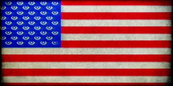 flag-surveillance-color